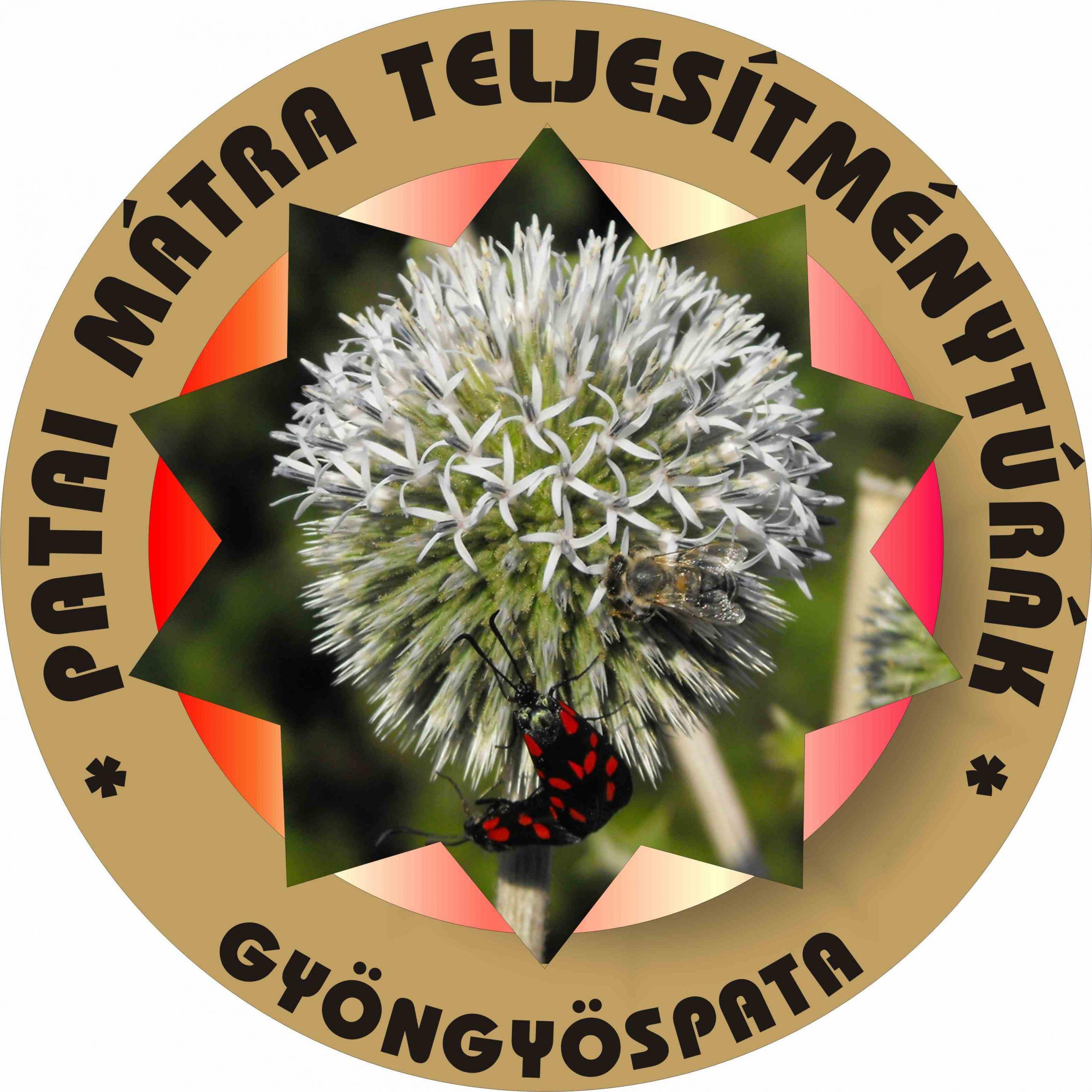 Pm logó